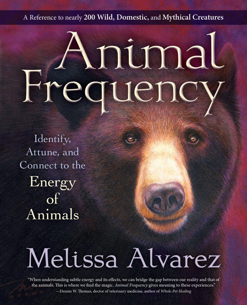 animal-frequency-1